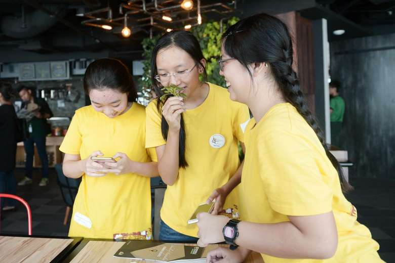 Lessons at D'Open Kitchen in Singapore
